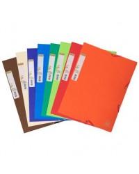 Exacompta chemise carte 3 rabats élastiques forever papier recyclé couleurs assorties 56980E