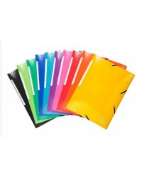 Exacompta chemise carte 3 rabats élastiques IDERAMA A4 couleurs assorties 55929E