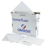 CARTON PLUME